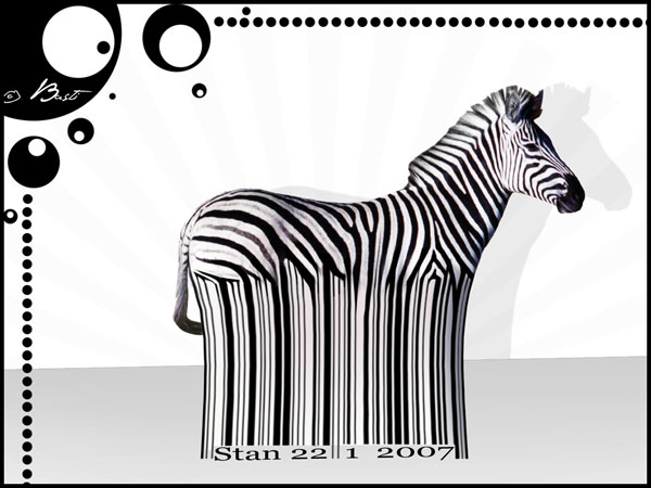 Zebra Wallpapers Art