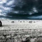 breathtaking_infrared_photos_03