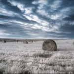 breathtaking_infrared_photos_04