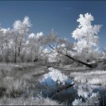 breathtaking_infrared_photos_18