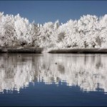 breathtaking_infrared_photos_19