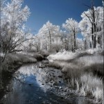 breathtaking_infrared_photos_21