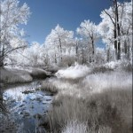 breathtaking_infrared_photos_22