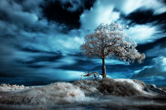 50+ Best Examples Of Infrared Photos