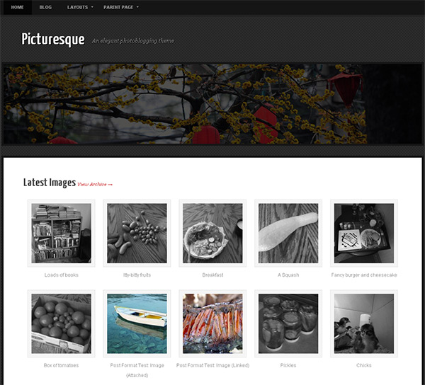 Picturesque WordPress Theme