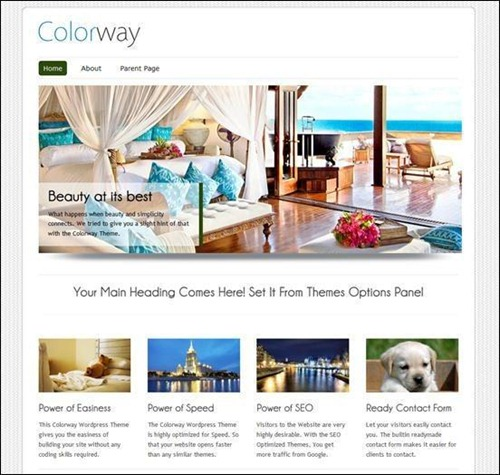 Colorway Minimalist WordPress Themes