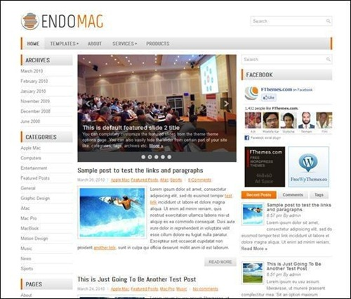 Endomag Simple WordPress Theme