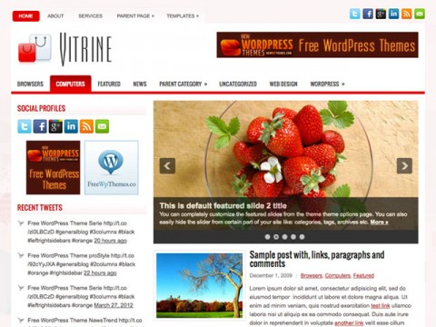 Viterine Magazine WordPress Theme