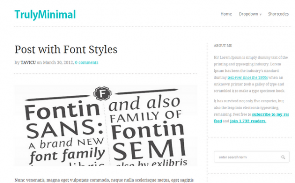 Minimal Theme WordPress Theme
