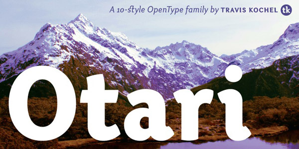 40 Best Fonts For Websites From Professional Designers