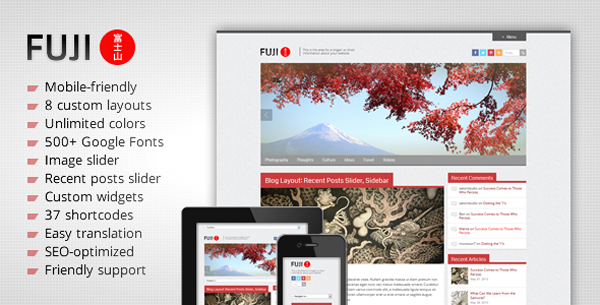fuji wordpress SEO theme