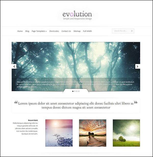 evolution simple theme