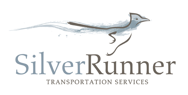 20 Catchy Transportation Logo designs