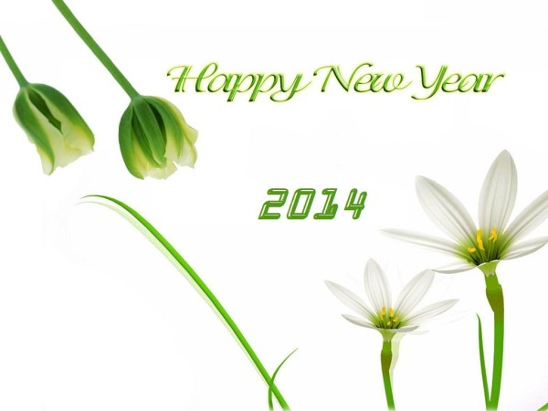 Happy New Year 2014 Images (4)