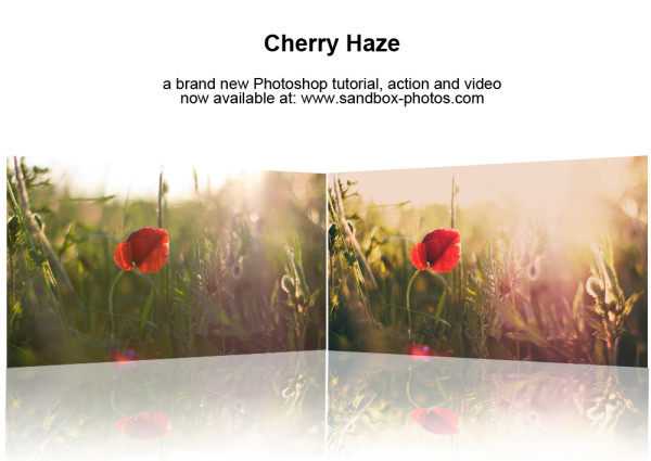 cherry_haze_photoshop_action_by_maegondo-d3g39ne