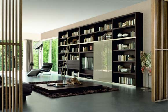 Living Room Bookshelves Modern